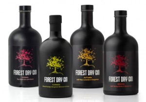 """Dégustation & Promotion """"FOREST GIN"""" @ Wine and More 