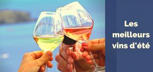 Salon des vins d'été et des rosés @ Wine and More | Namur | Wallonie | Belgique