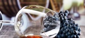 Foire aux vins d'automne @ Wine and More  | Namur | Wallonie | Belgique