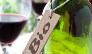 Salon des Vins Bio & Nature @ Wine and More