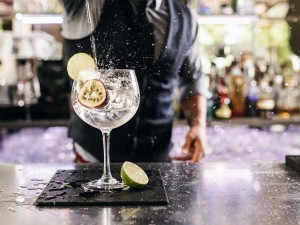 Masterclass Gin 2020 #3 @ Wine and More
