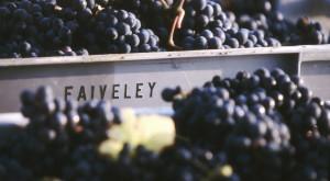 Wine Diner - La Bourgogne du Domaine Faiveley @ Wine and More