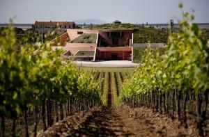 "Wine Diner #4 ""Antinori & Le Sangiovese"" @ Wine and More"