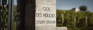 """Wine Diner """"La Bourgogne de Joseph Drouhin"""" @ Wine and More"""